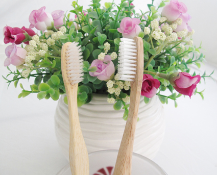 nylon bristle bamboo toothbrush